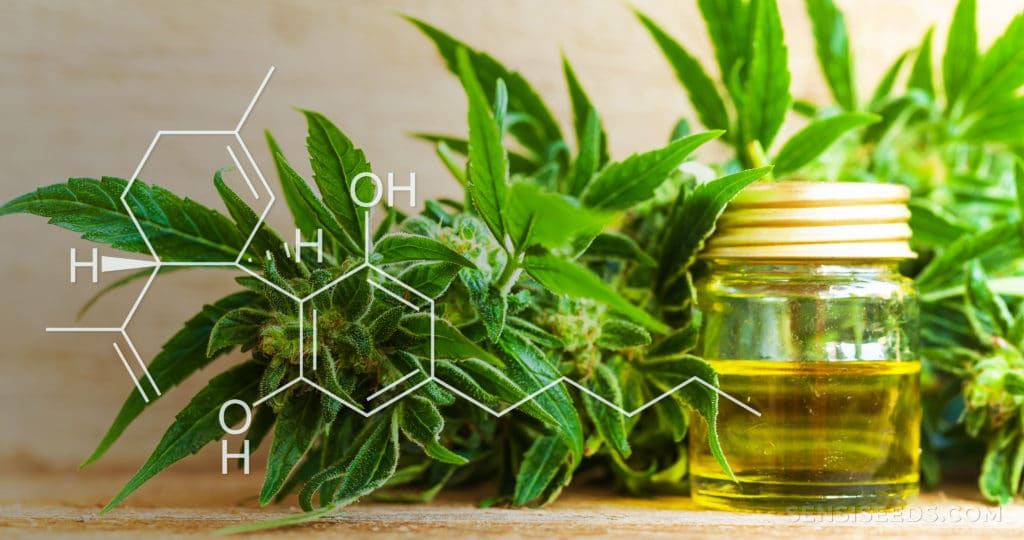 CBD eco-friendliness an why CBG is so expensive