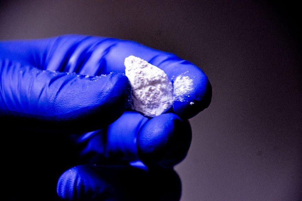 CBG crystals PHOTO COURTESY OF STEVE'S GOODS